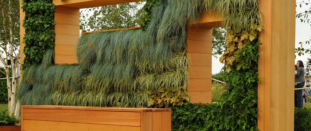 Young Designer Vying for RHS Show Awards Chooses Western Red Cedar